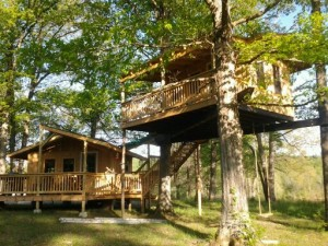 Firefly Tree House at Shady River on Eleven Point River