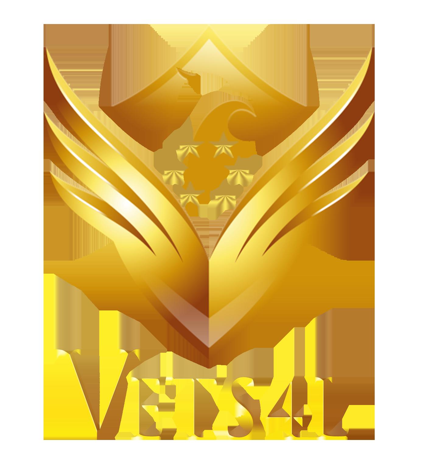 Vets 4 Life logo