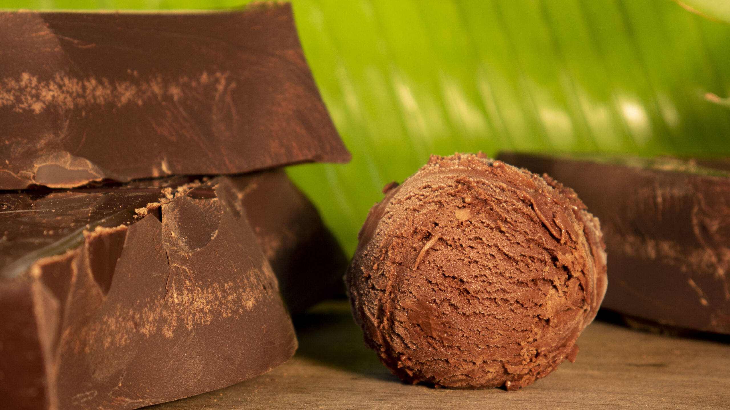 Venezuela Chocolate Gelato 2