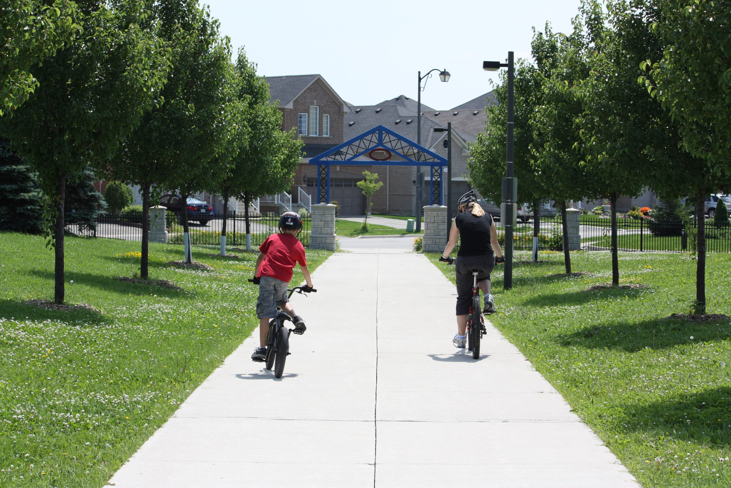 People bicycling on a path through the park.
