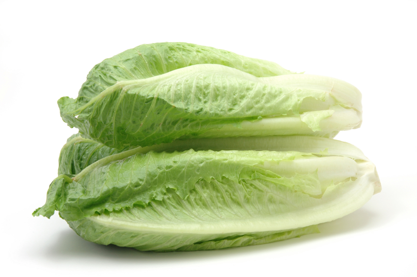 Lettuce, Romaine Hearts 3Pack