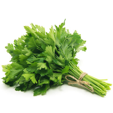 Herbs, Italian Parsley