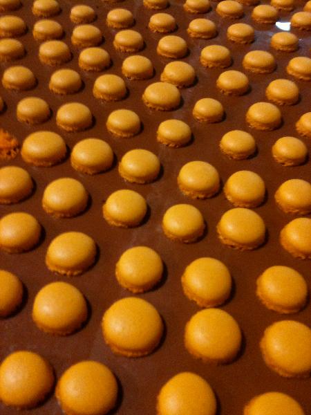 mini-macarons-shells