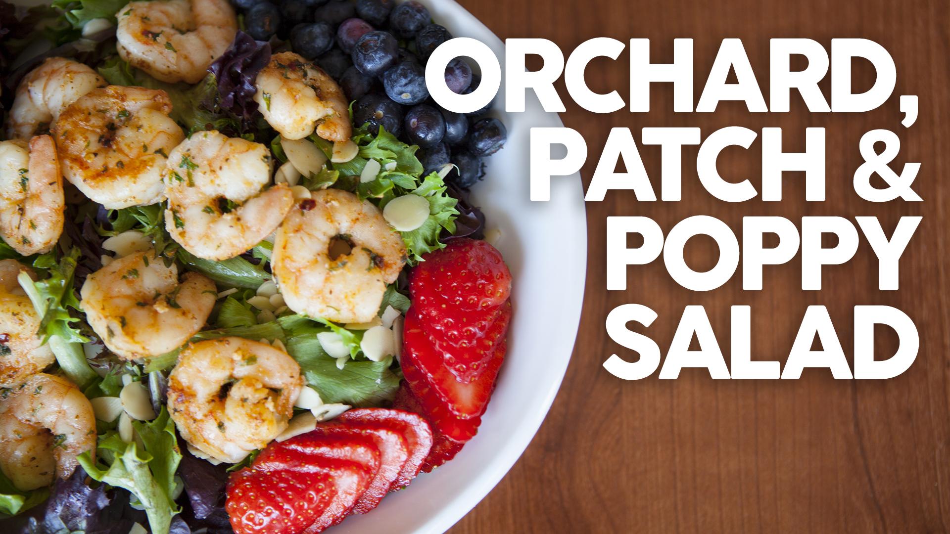 orchard-patch-poppy-salad