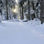 """Read more about the article """"In The Bleak Midwinter"""""""