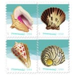Read more about the article Beach Music and 2017 Seashells Postcard stamps