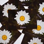 Read more about the article Thrive Encouraging Daisy Postcard by EntreCard