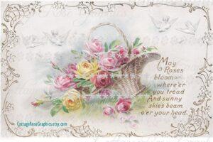 CottageRoseGraphics May Roses Bloom Vintage Postcard