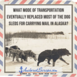 Read more about the article What mode of transportation eventually replaced most of the dog sleds for carrying mail in Alaska?