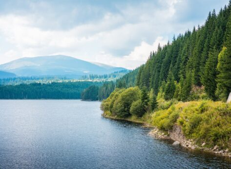 Lake Shore and Forests  Scenery in Romania