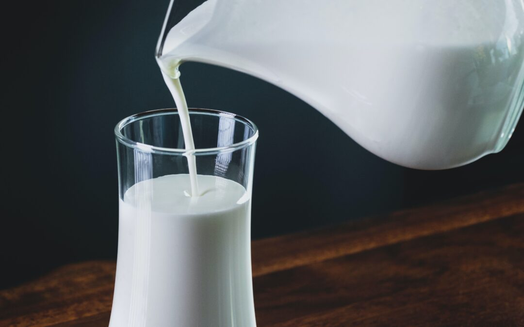 benefits of dairy