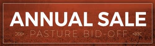 Annual Sale Graphic