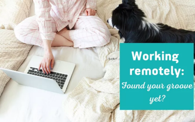 My home is my office: virtual work during COVID-19