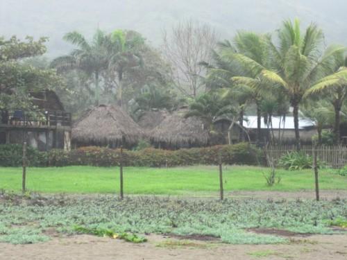 La Tortuga beachfront hotel-cabana in Ayampe Ecuador