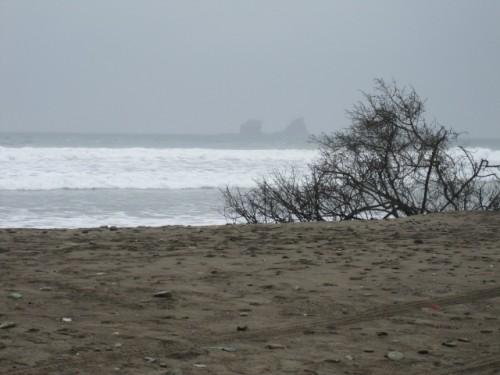 ayampe ecuador surf