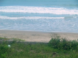 las-nunez-beachfront-lot-ecuador