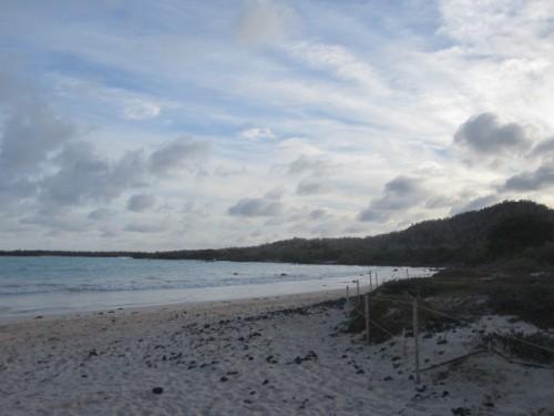 garrapatero-beach-galapagos