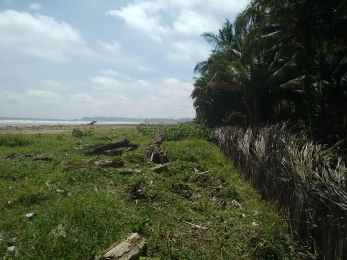 musine beach lot