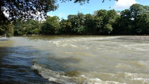 amazon-river-ecuador