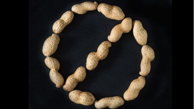 Peanuts in a circle