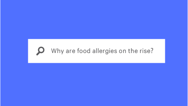 """internet search for """"why are food allergies on the rise?"""""""