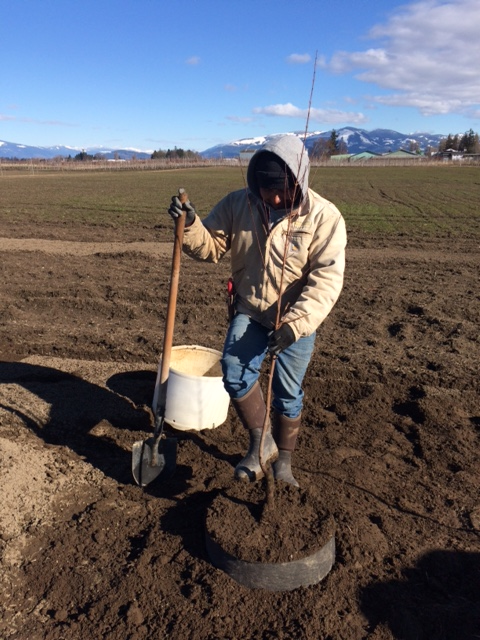 2019 Planting has begun!
