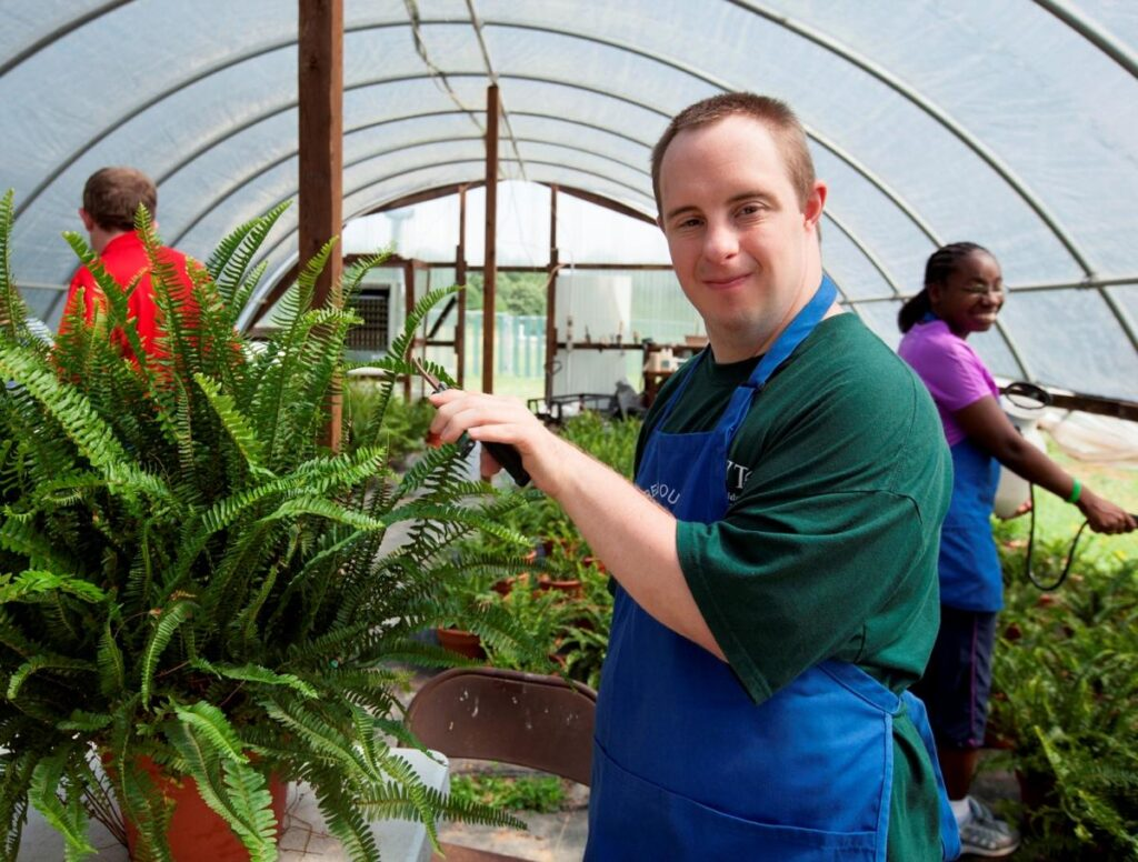 Photo of a man working in a greenhouse.  Photo credit: Northeastcareer.org