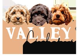 Valley Cockapoos Logo