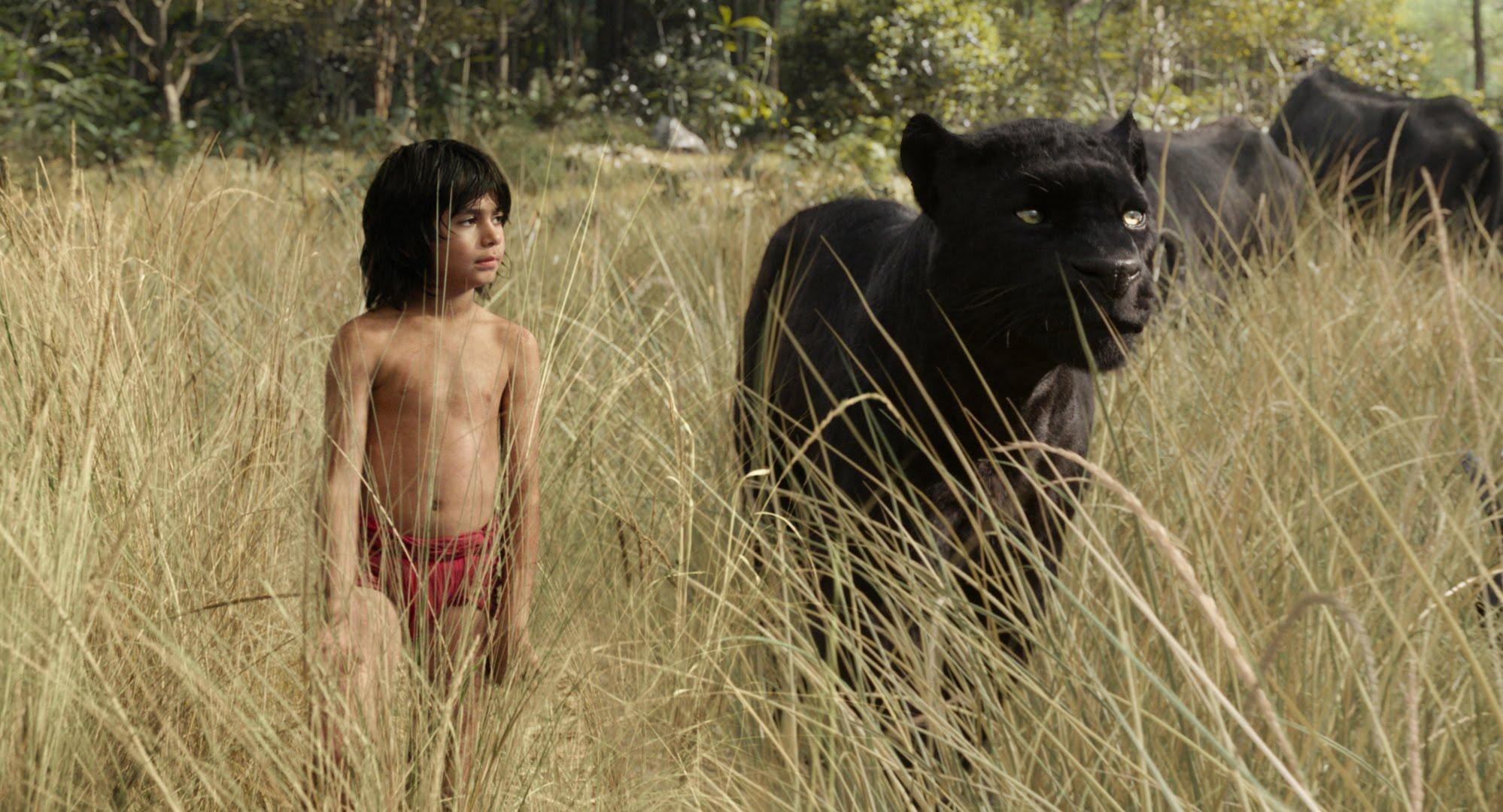 Jungle Book Bagheera MovieSpoon.com