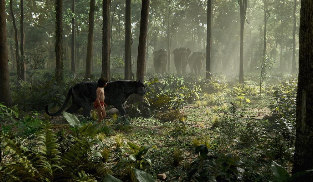 The Jungle Book Mowgli Bagheera MovieSpoon.com