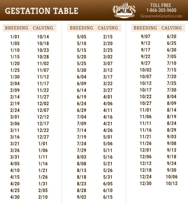 Gestation Table