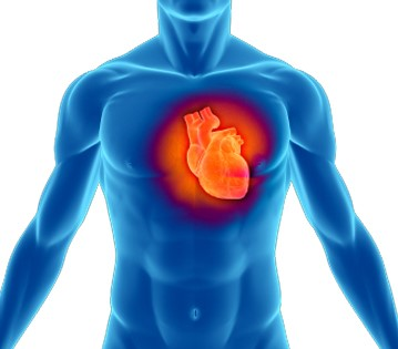 """Groundbreaking Cardiology System Earns """"Stage 2"""" Certification"""