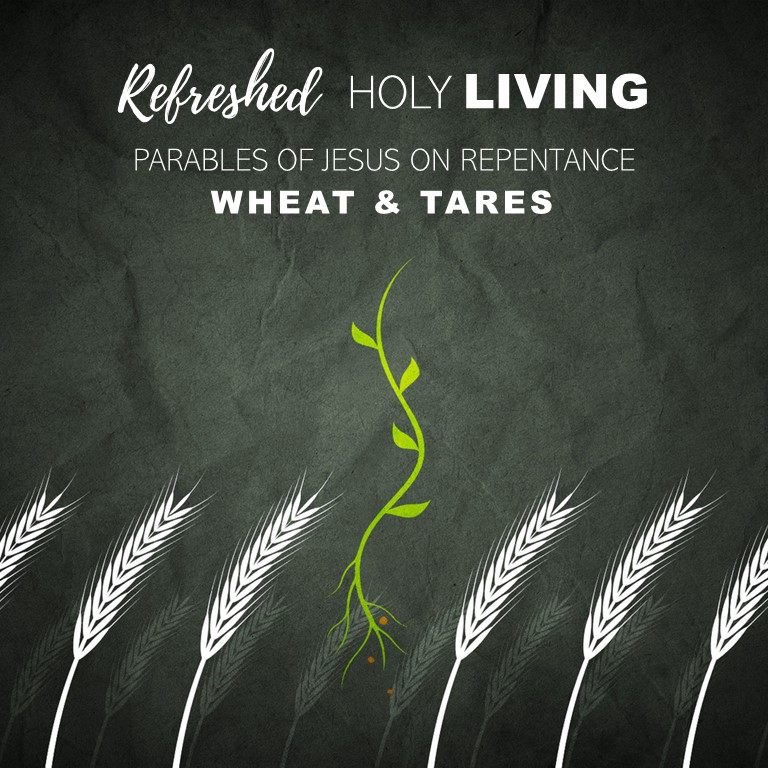 Parables of Jesus on Repentance – Wheat & Tares