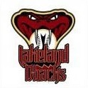 Lakeland D-backs logo