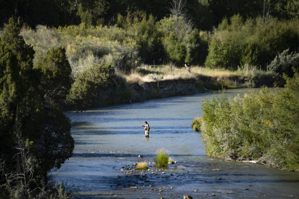River Fly Fishing in Montana