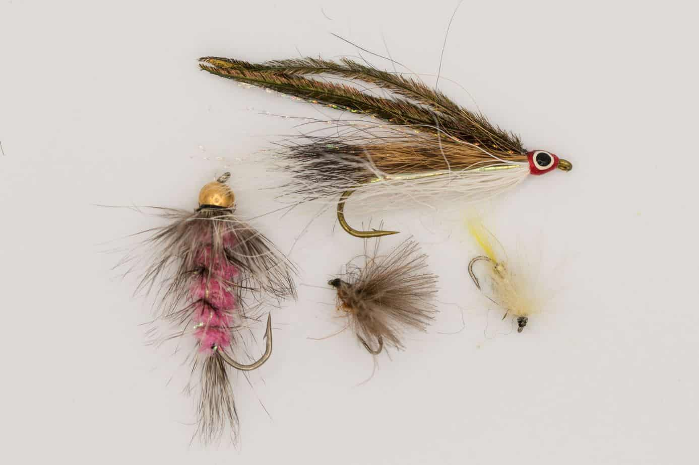 9 Best Mayfly Patterns for 2021