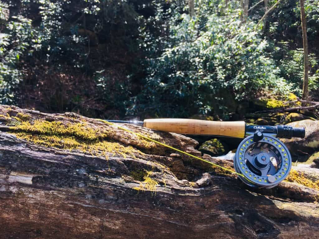Are Expensive Fly Rods Worth The Money?