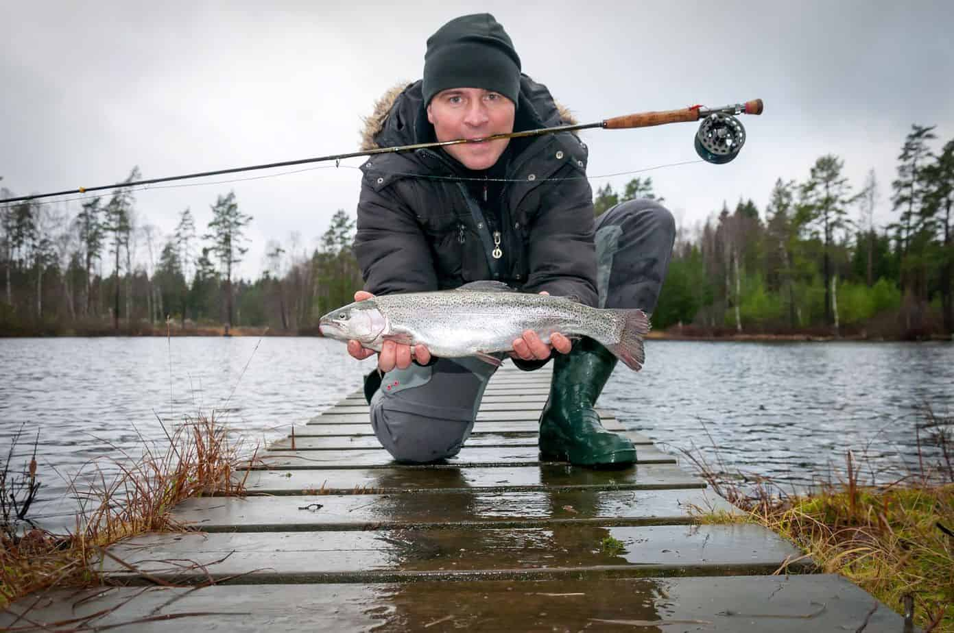 What's The Difference Between Steelhead And Rainbow Trout?