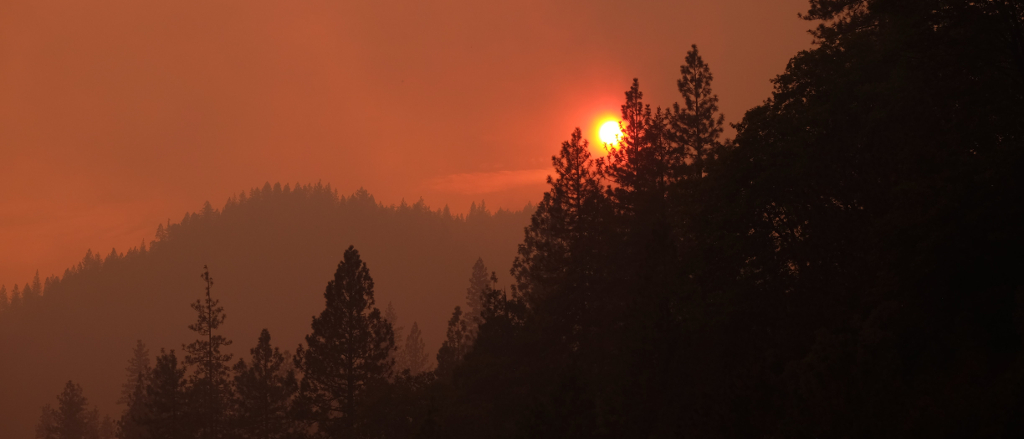 The Rise Of Wildfires In California For 2020