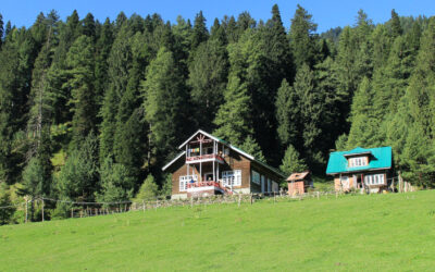 accessory dwelling units callifornia pasquini engineering blog feature 400x250 - Home -