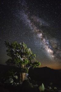 """""""High Sierra & Milky Way"""" by Ian Bomarth"""