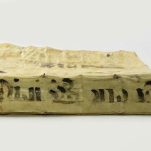 Sancti Bonaventure tractatus et libri quam plurimi