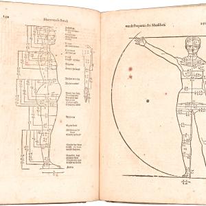 Beschryvinghe von Albrecht Dürer van die Menschelijcke Proportion (Tratado sobre las proporciones del cuerpo humano)