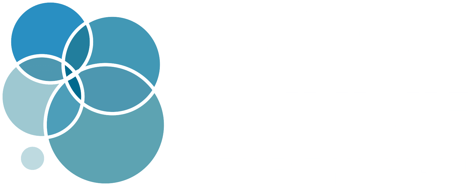 The Derm Institute Logo with white text