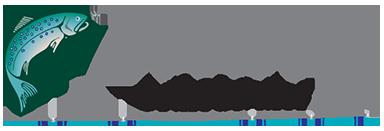 Logo for Wentz Orthodontics