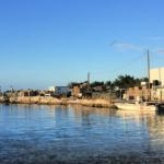 The marina in Keys Fisheries