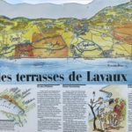 A map of the Lavaux Vineyard Terraces