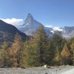 Matterhorn and pines