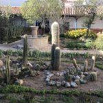 Cactus, One of the beautifu patios, Entrance, Convento de Santa Teresa