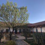 Nature in the Convento de Santa Teresa